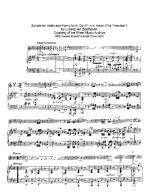 Sonata Kreutzer 1 Mov Sheet Music