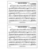 Now or Never (from High School Musical 3) - Flute/Piccolo Sheet Music