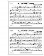 All The Small Things - Flute/Piccolo Sheet Music