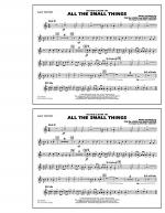 All The Small Things - 2nd Bb Trumpet Sheet Music