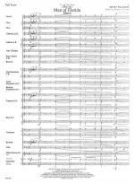 We're Men Of Florida - FULL SCORE - LARGE Sheet Music