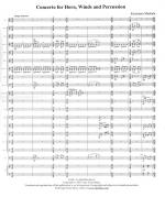 Concerto For Horn, Winds And Percussion Sheet Music