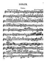 Strauss: Sonata in E flat Major, Op. 18 Sheet Music