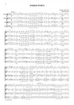 Sibelius Andante festivo Sheet Music
